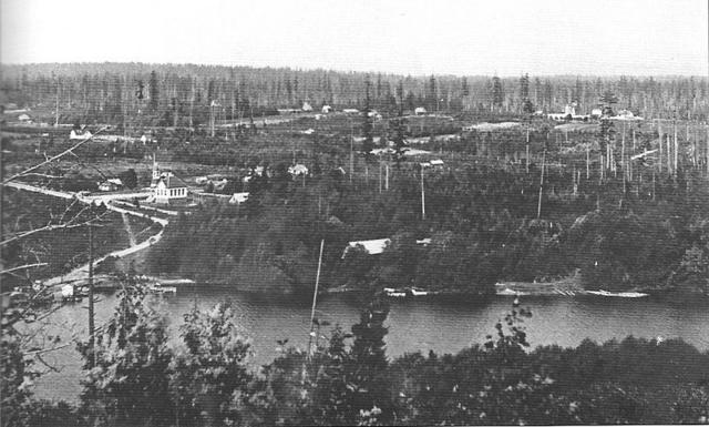 История и развитие Беллвью (Bellevue)