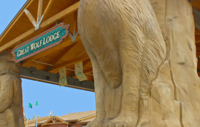 Аквапарк «Берлога могучего волка» Great wolf lodge