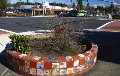 История одного города. Часть 1 ( Bellevue, WA)